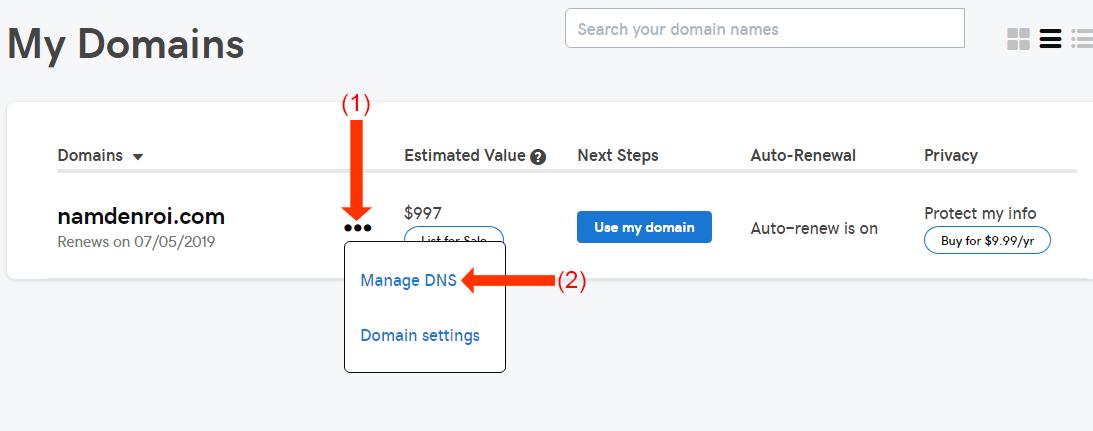 trang-quan-ly-domain