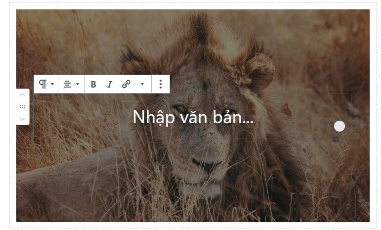 nhap-van-ban-cover-block