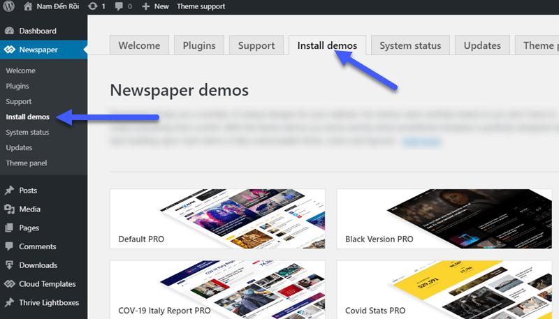 install-demo-newspaper-theme